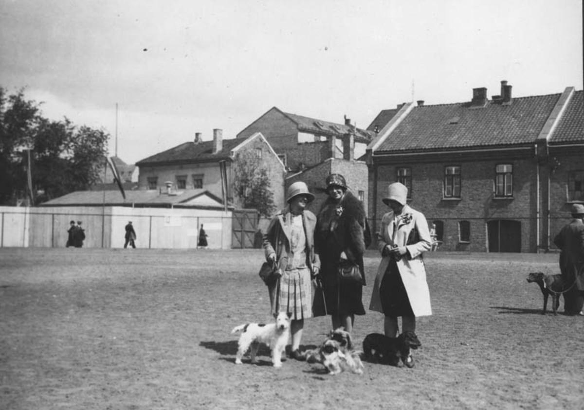 Helga Flor Øyen m.fl. på hundeutstilling.