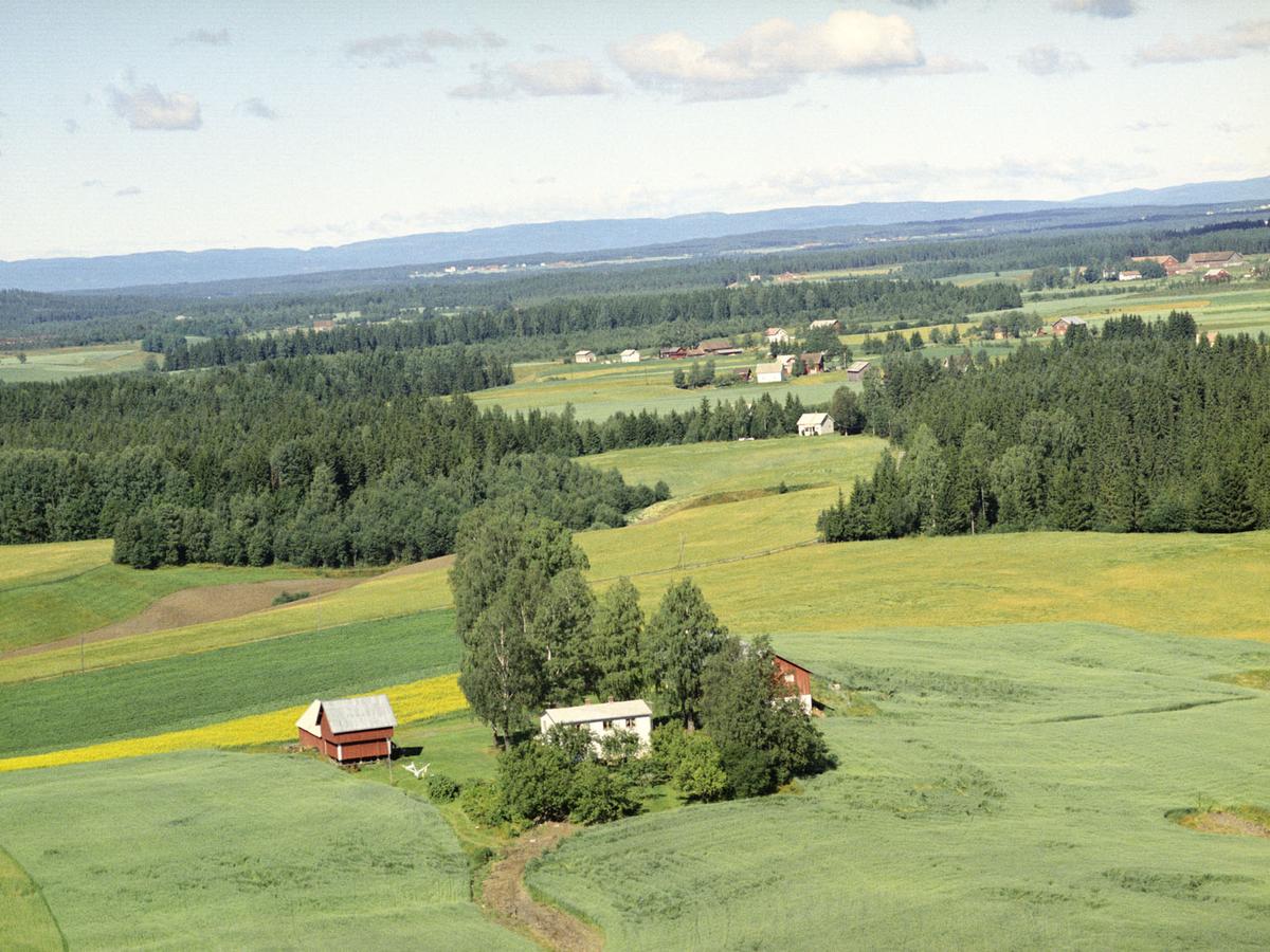 NORDRE FYHRI GÅRD, ÅRNES 81/4