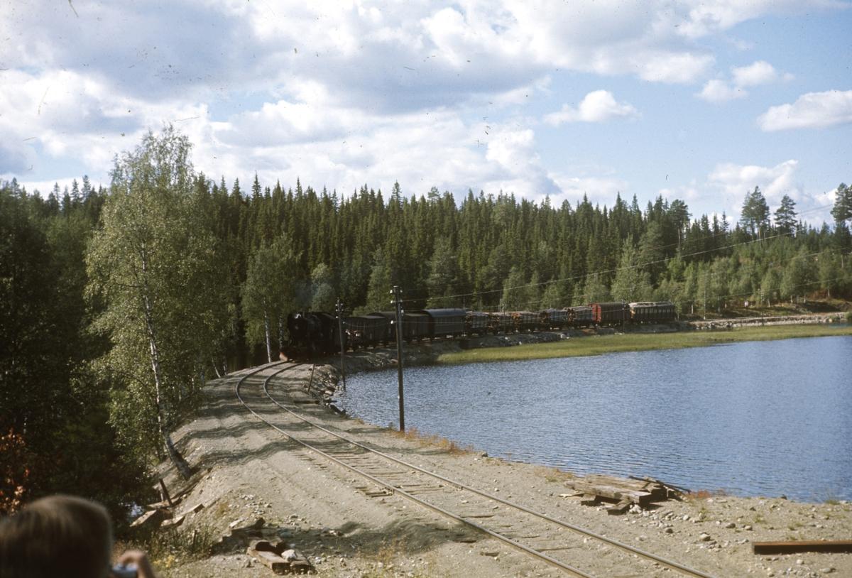 Godstog på Valdresbanen ved Trevatn