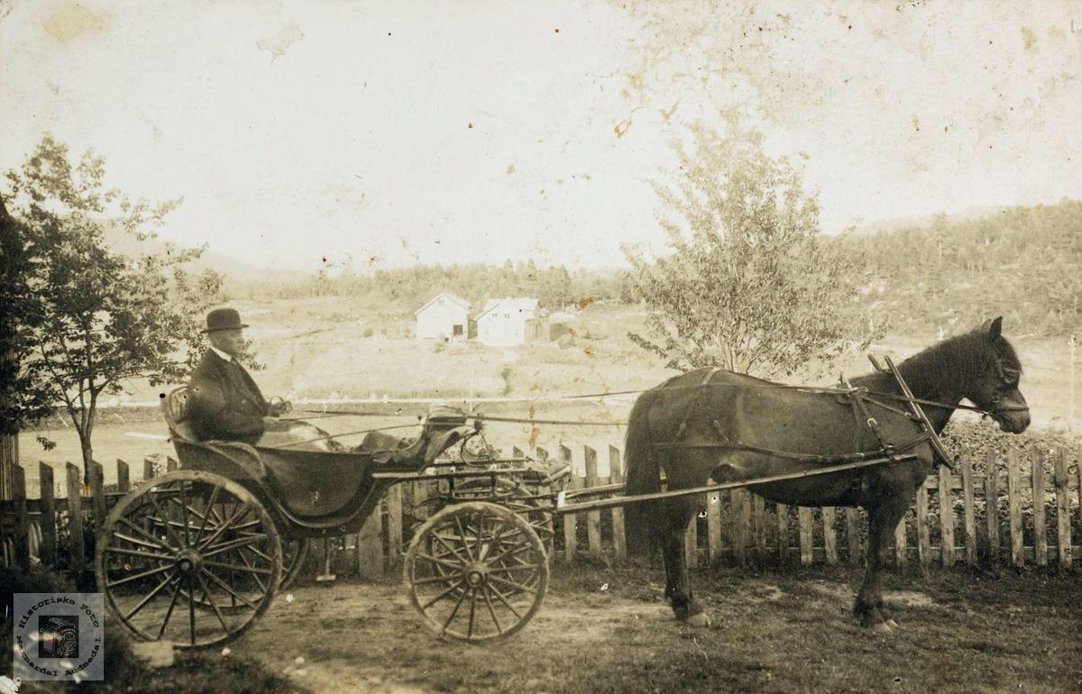 Soknepresten i Bjelland, A.B. Asserson til hest på Rosseland.