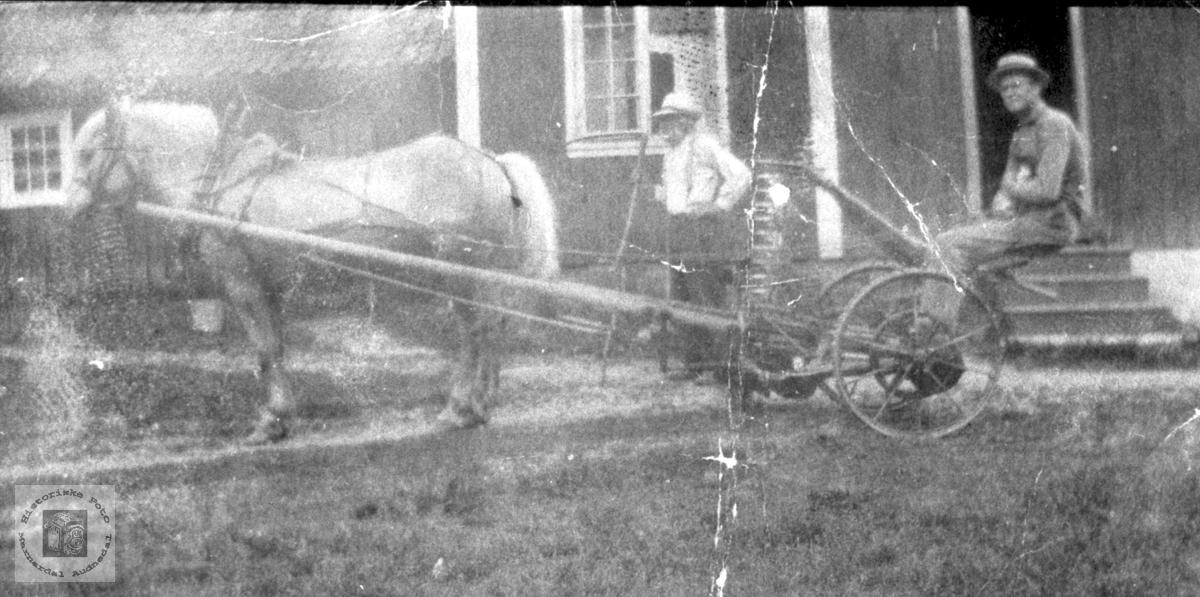 Hest og slåmaskin i Bjelland.