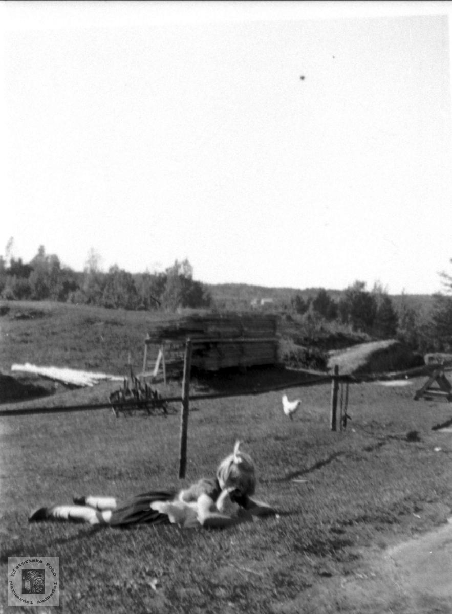 "Kosestund med ""lekekamerat"" ei høne. Moland, Bjelland."