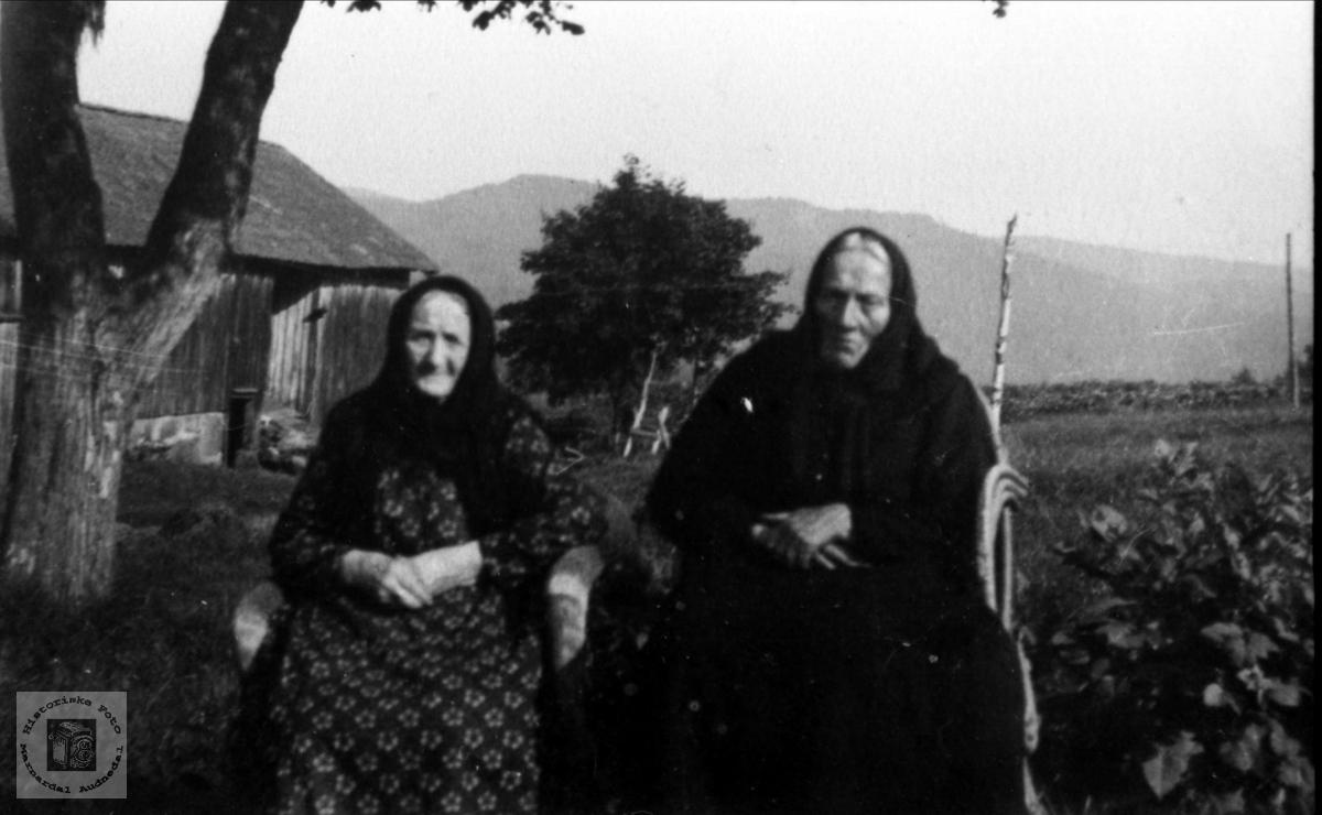 Gruppeportrett av Anne Gurine Fjellestad og Anna Christensdtr. Lian, Laudal.