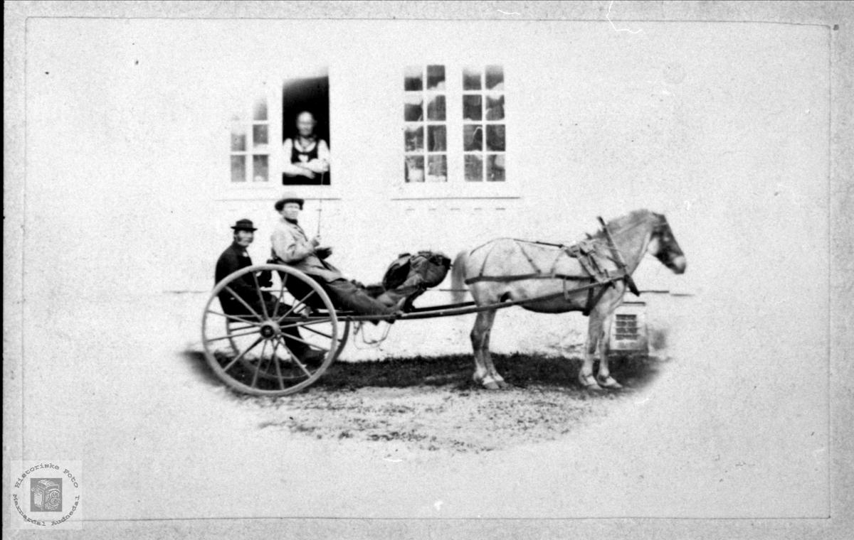I karjol. Rasmus Kleveland og Gunhild Gangsaa.