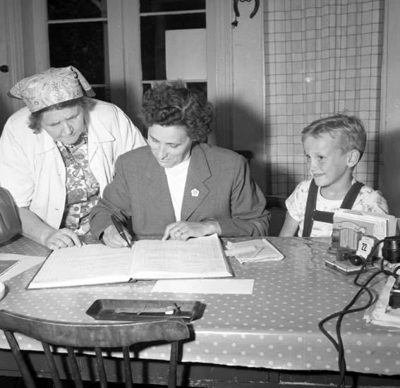 Vandrarhemmet Bodelid 1958.