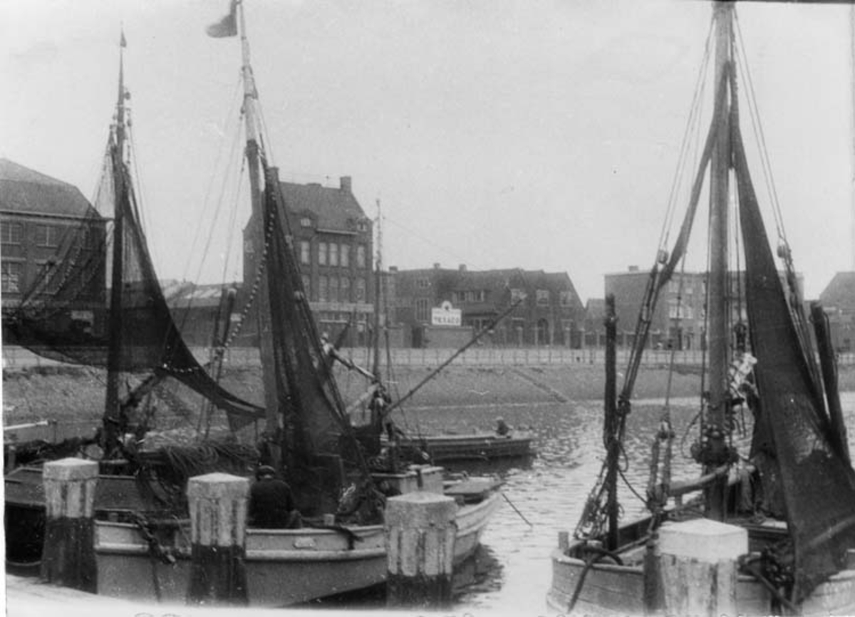 Skrivet på baksidan: Fiskegrejor till torsk Scheveningen Holland.