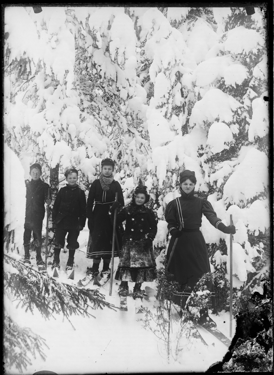 Barn som er ute i skogen og går på ski.
