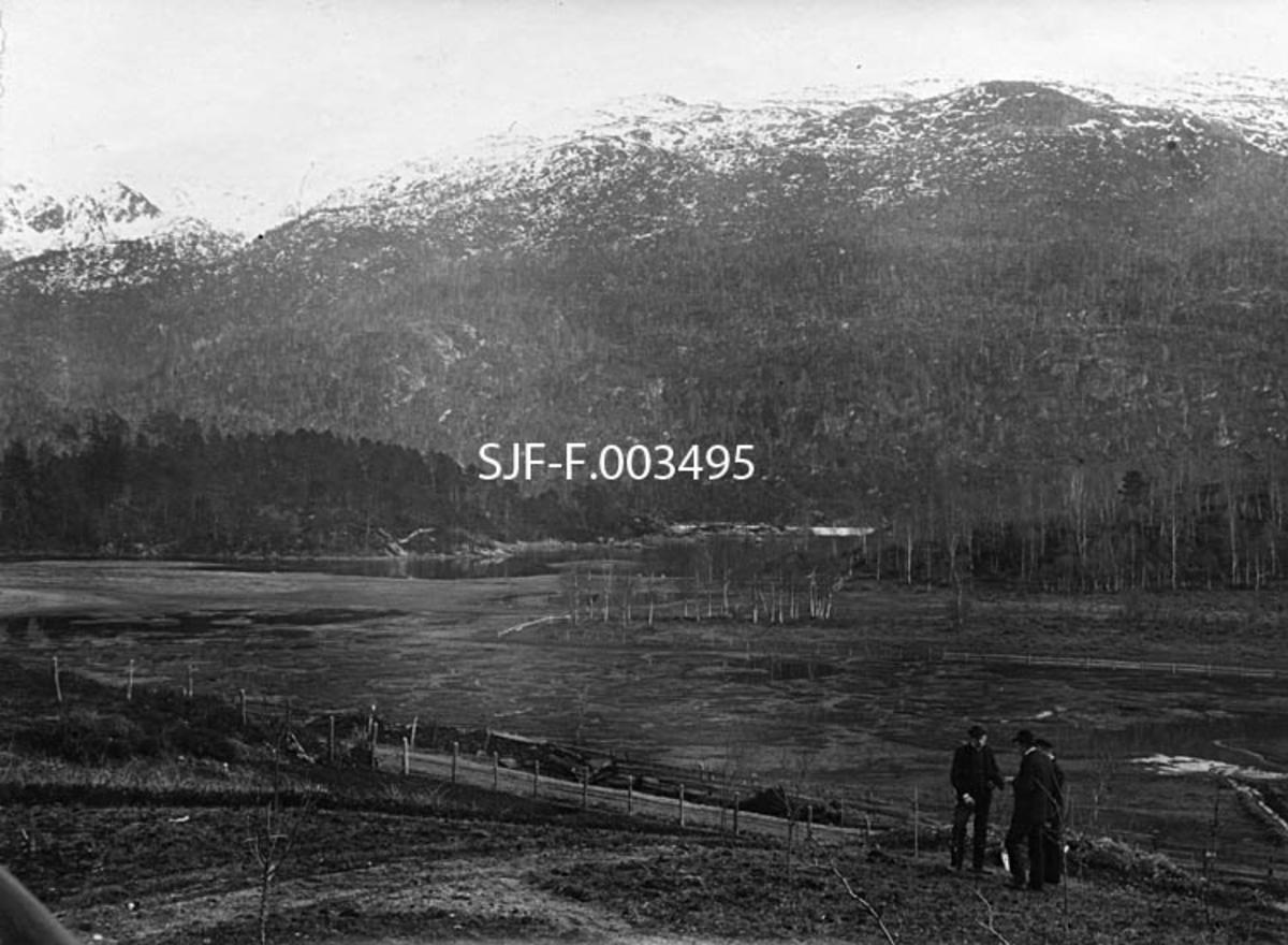 Fra Bergens Skogselskabs planteskole på Ekhaug (Syfteland) i Os i Hordaland.  Fotografiet later til å være tatt på den nedre delen av det oppdyrkete planteskolearealet, som var skjermet mot en nedenforliggende veg med et nettinggjerde.  Like ovenfor dette gjerdet sto tre karer i samtale da fotografiet ble tatt.  Nedenfor vegen var det et myraktig sletteland mot et våtmarksområde, sannsynligvis en liten innsjø.  På den motsatte sida av denne raget et markant fjellmassiv med snø i de høyereliggende sonene.