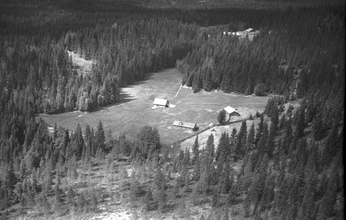 Løvhaugseteren (Gnr 130/10) i Julussdalen. Løvhaugvegen 337. Har også hørt denne omtalt som Gobakkvollen.